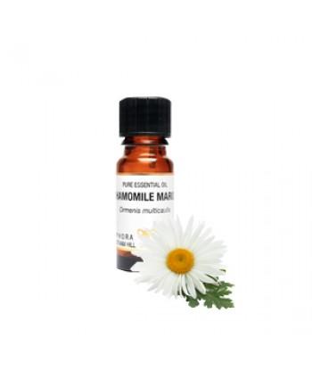 Chamomile-Maroc-Essential-Oil