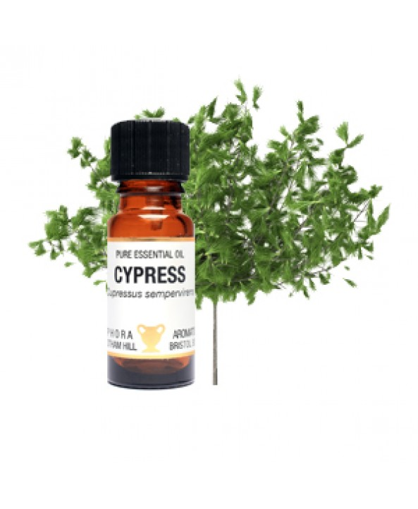 cypress essential oil thesis Essential oil is derived from the gummy resin of the small, thorny myrrh tree and has been used for centuries for its internal and external health benefits.